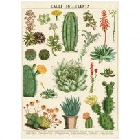 Cactus and Succulents Vintage Style Poster