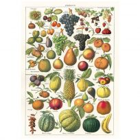 Fruits and Berries Chart Vintage Style Poster