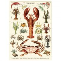 Crustaceans Lobster Crabs Chart Vintage Style Poster