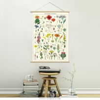 Wildflowers Species Vintage Style Poster Hanger Kit Chart