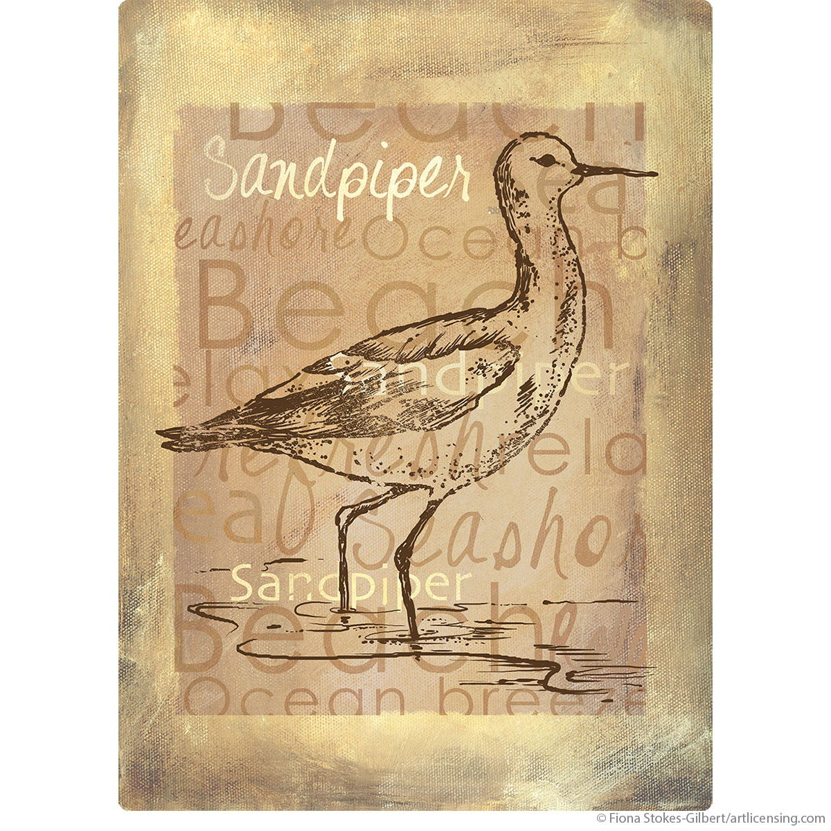 Delighted Sandpiper Birds Wall Decor Images - The Wall Art ...