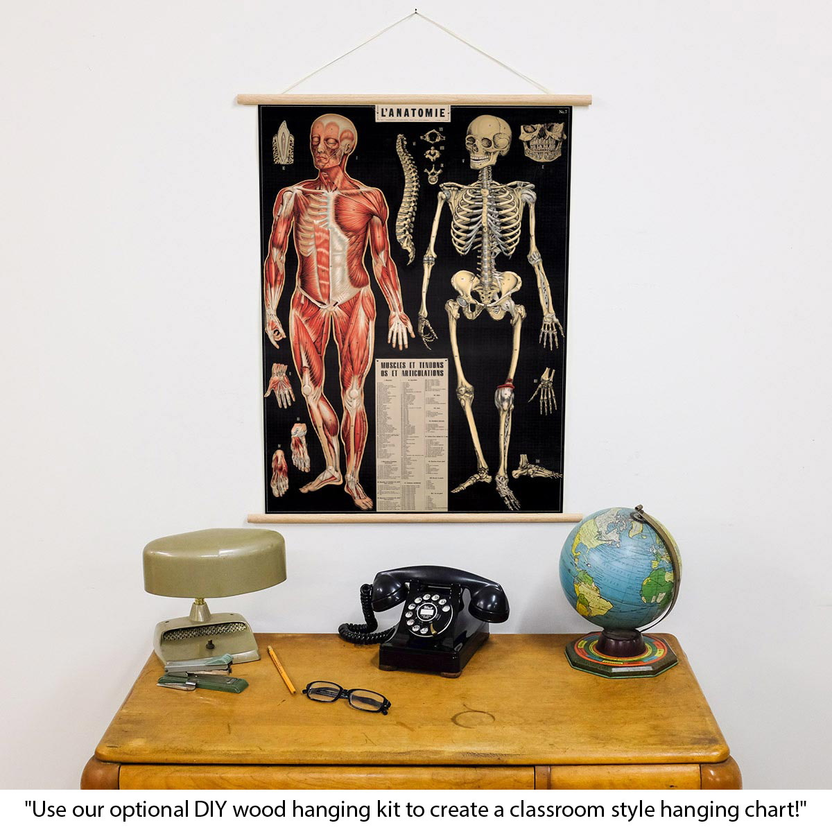 French Anatomy Chart Vintage Style Poster | Decorative Paper ...