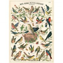 French Small Birds Chart Vintage Style Poster