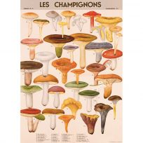 French Mushrooms Chart Vintage Style Poster